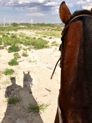 The shadow of a man riding a horse
