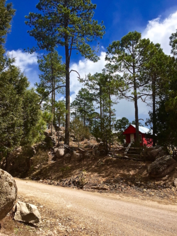 A tiny red cabin in the woods of the Sinaloa mountains