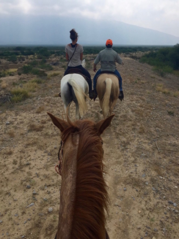 Horse riding with Sophie and a friend of ours over Mexican ranch land