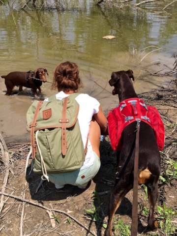 Sophie with a Fjällräven backpack and Merida her doberman with a dog backpack playing with Ikarus her young doberman