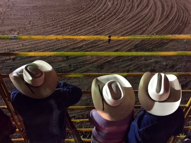 Three cowboys leaning at the gate of the rodeo arena
