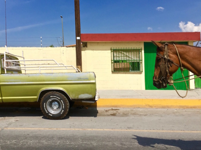 A horse and an old Pick up together on the streets of Mexico