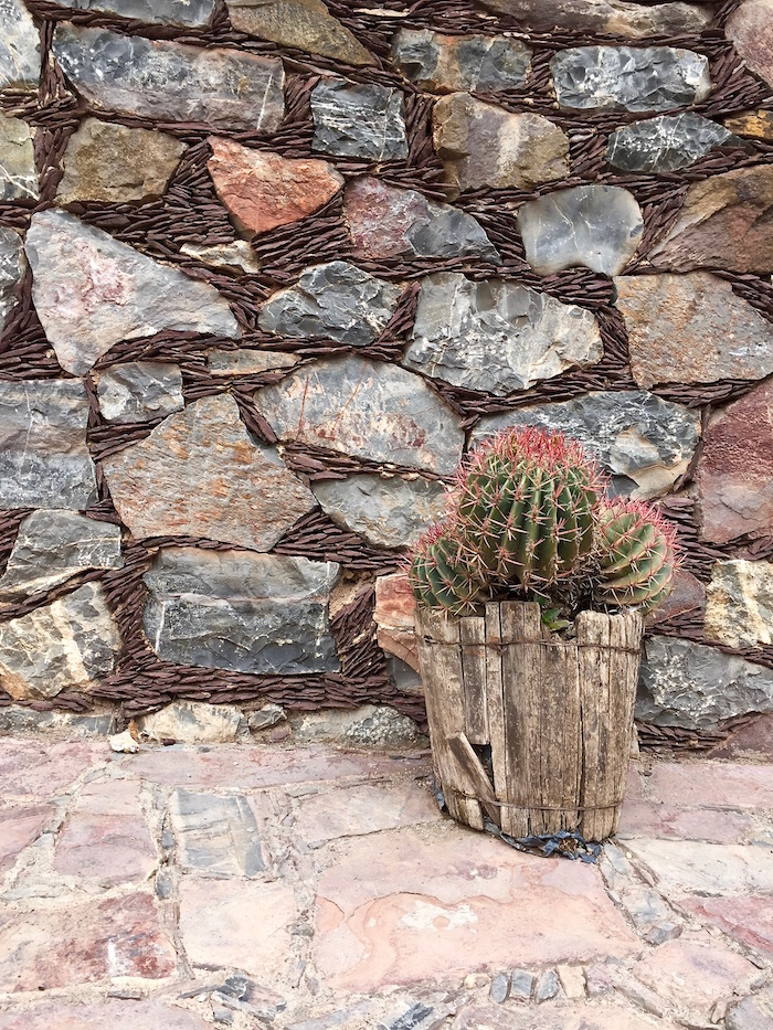 Cactus with red spines in a wooden pot in front of a stone wall