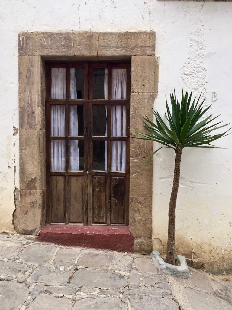 Palm tree set in concrete in front of an entrance door in Real de Catorce