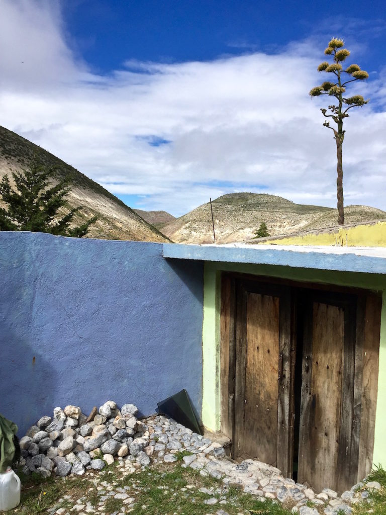 View over sparse mountains with a blue wall and an flowering agave in the front