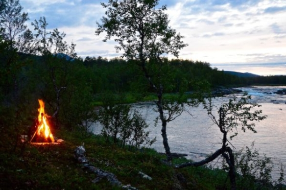 Our campfire between birches overlooking the river in the evening in Sweden