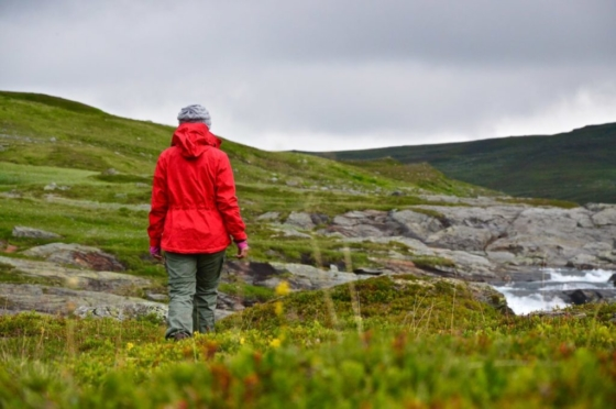 Sophie in her red Fjällräven jacket walking into the green but sparse landscape of the mountains in Lapland, Sweden