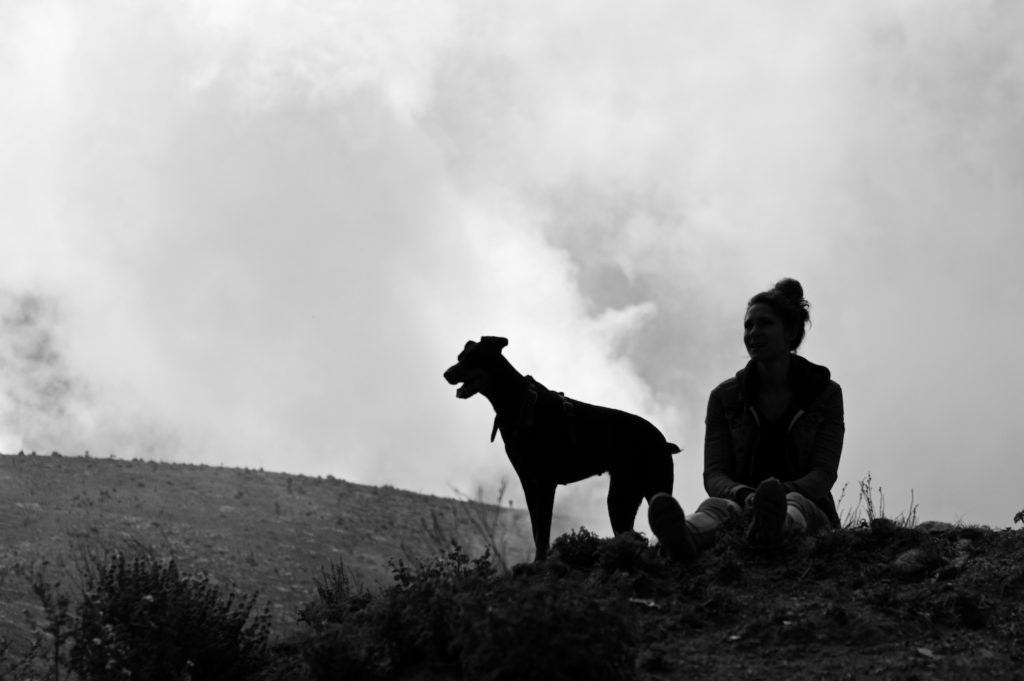 Silhouettes of Sophie and Merida our doberman on top of the mountain