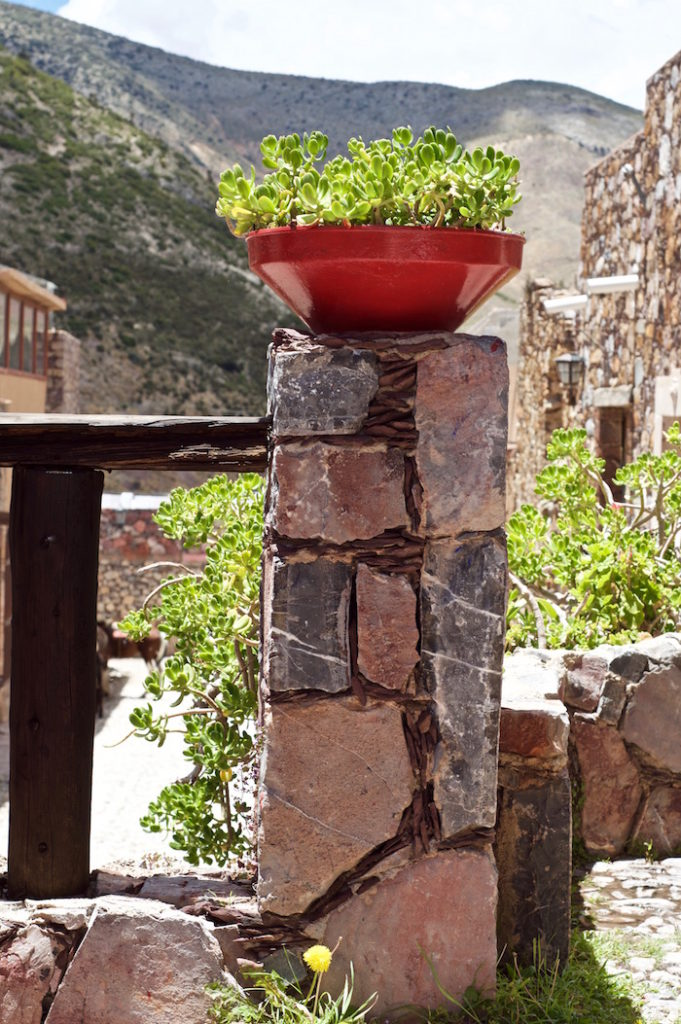 Flowers in a red pot standing on old stone walls, Real de Catorce