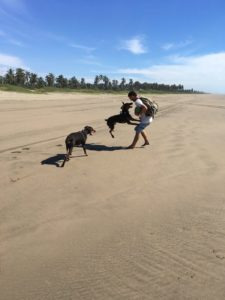 Peter is playing with our two doberman dogs at a tropical beach after we did take the risk and moved to Mexico